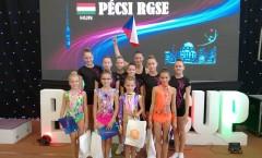 XVII. Pécs cup Maďarsko
